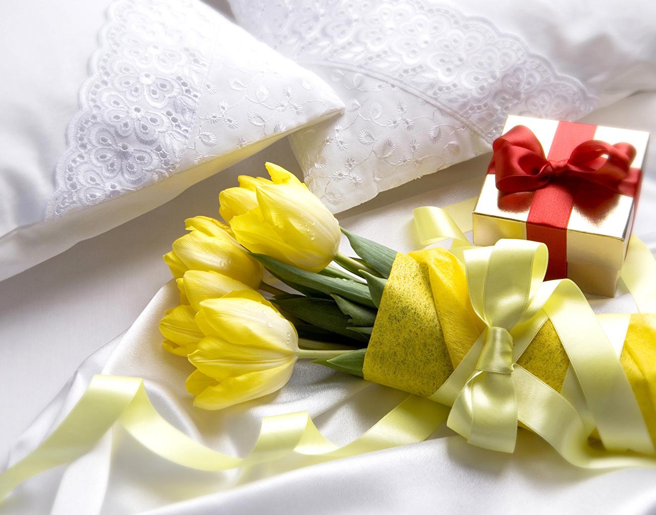 Фотографии Желтый тюльпан Цветы подарков Бантик желтых желтые желтая Тюльпаны цветок Подарки подарок бант бантики