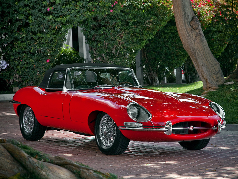 Картинки Ягуар E Type Roadster (Series I)  1961–67 Родстер Автомобили Jaguar Авто Машины