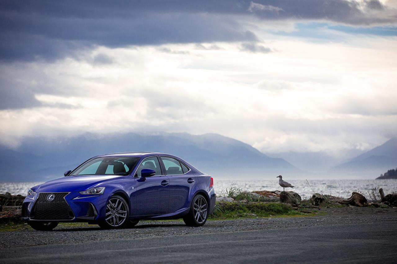 Фото Лексус 2017 IS 200t F SPORT Синий авто Металлик Lexus синих синие синяя машина машины автомобиль Автомобили