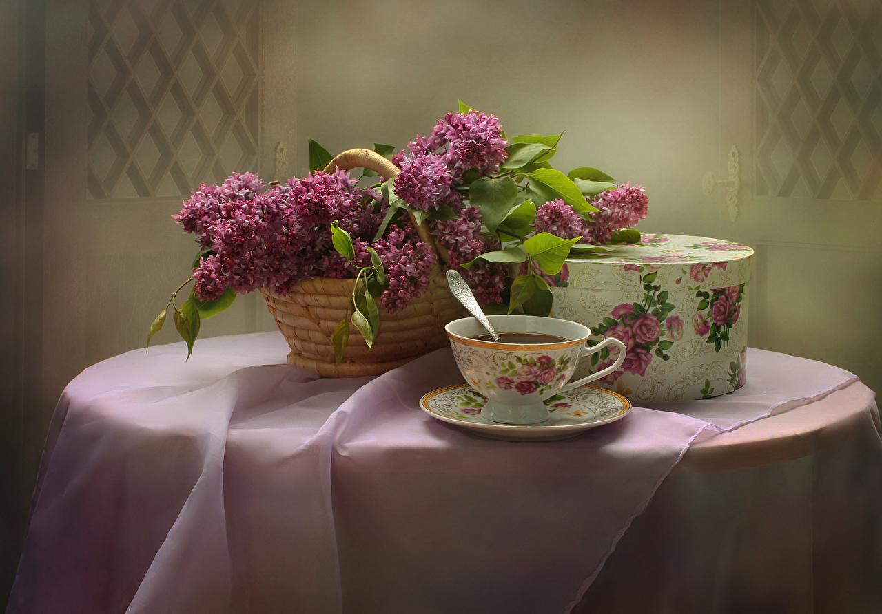 Картинка Чай цветок Сирень коробки Корзинка Чашка стола Продукты питания Натюрморт Цветы коробке Коробка корзины Корзина Еда Стол Пища столы чашке
