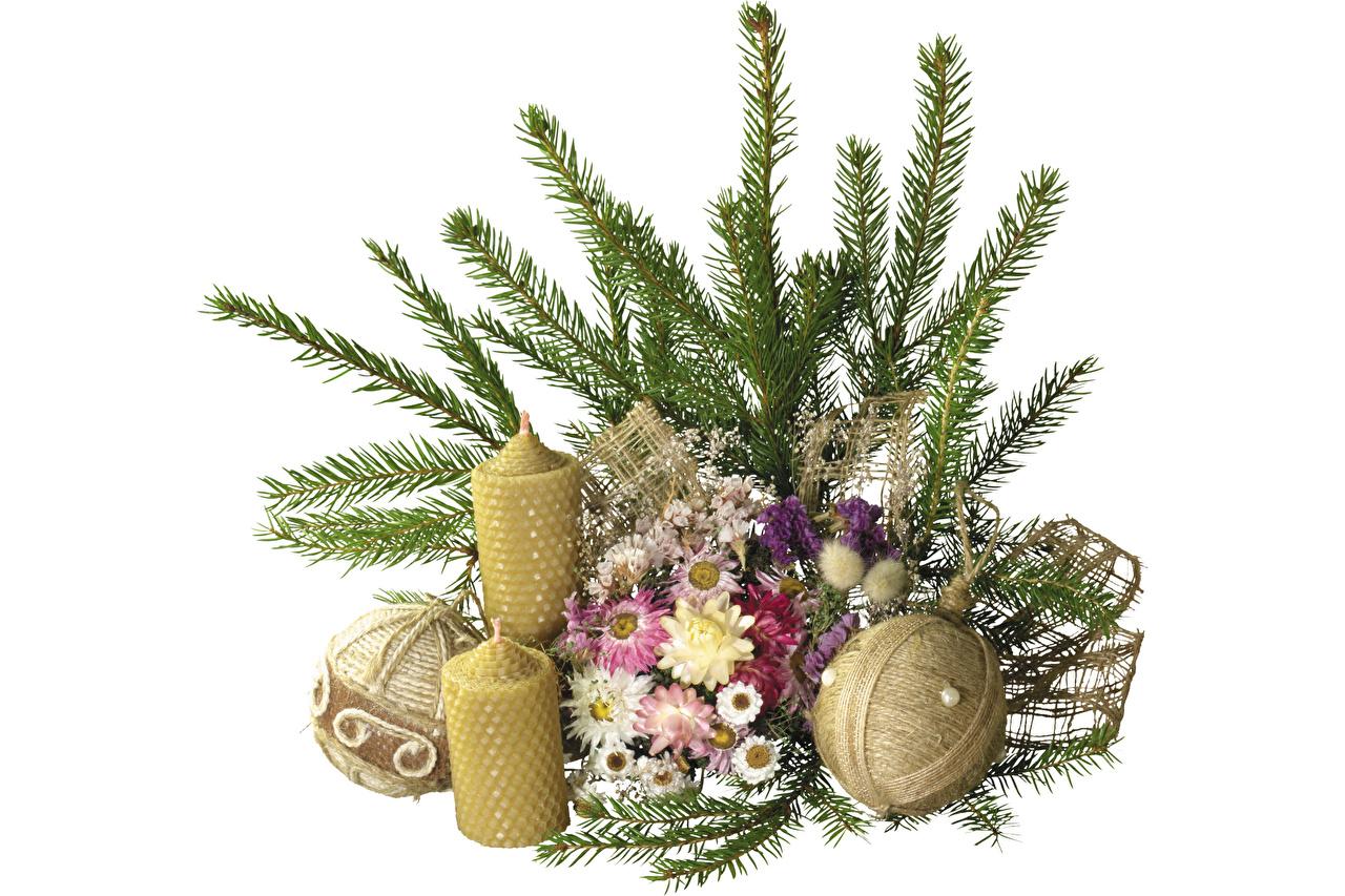 Обои для рабочего стола Рождество Шар Свечи на ветке Новый год ветвь ветка Ветки Шарики