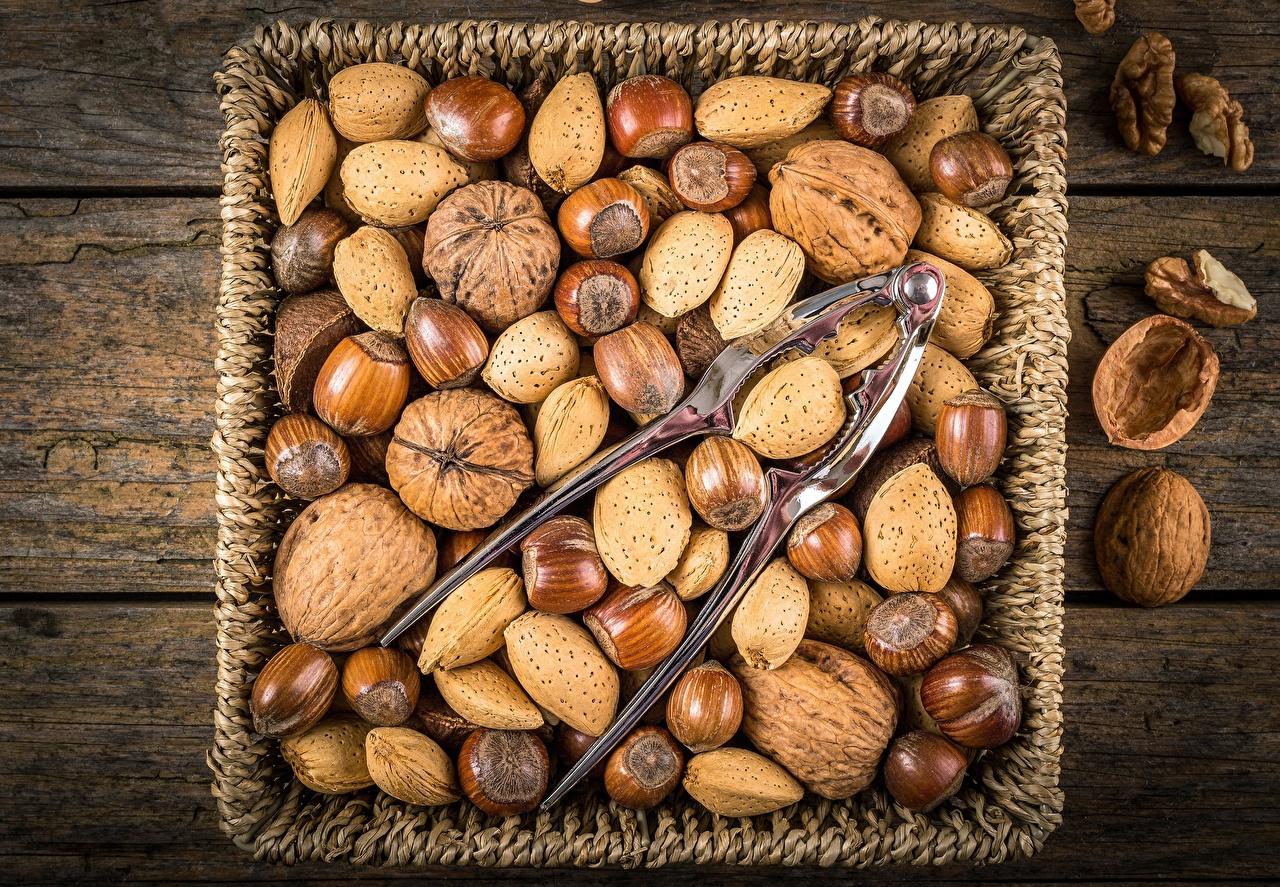Фото Грецкий орех Лесной орех Много Орехи Фундук