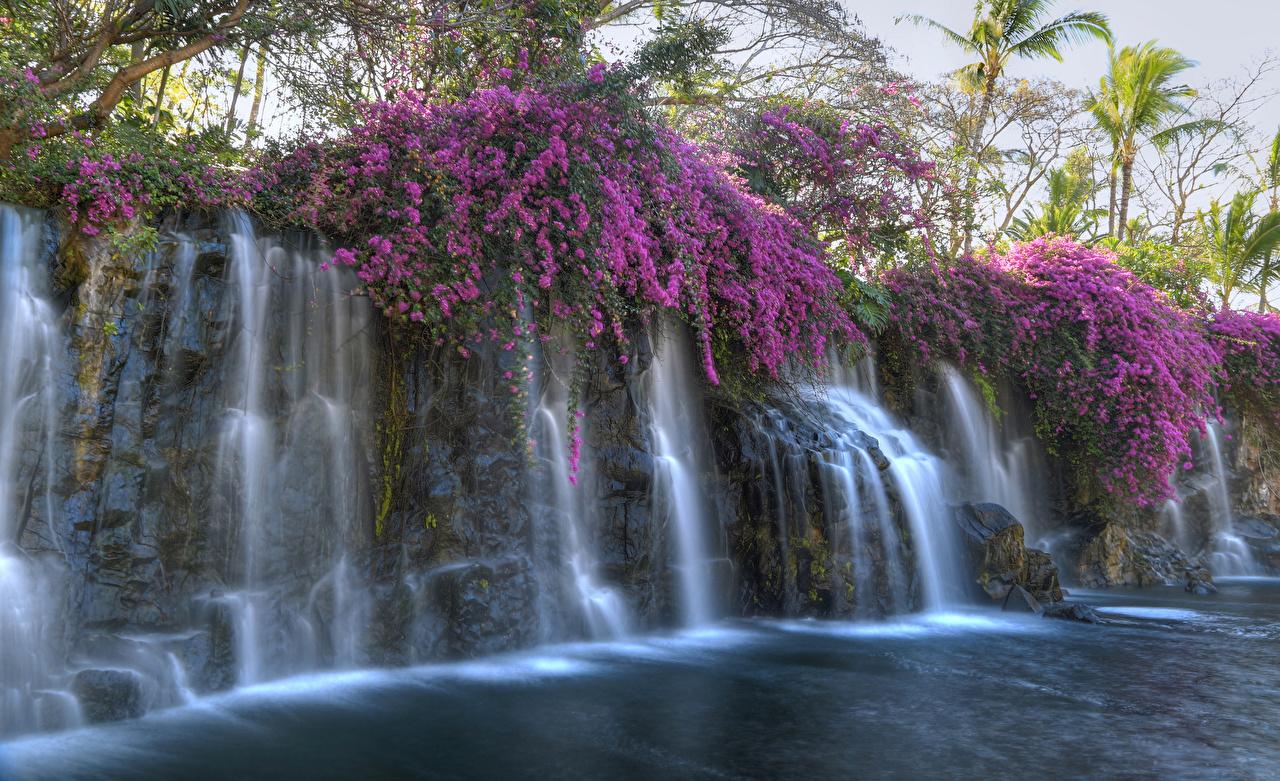 Обои для рабочего стола Природа Водопады тропический Тропики