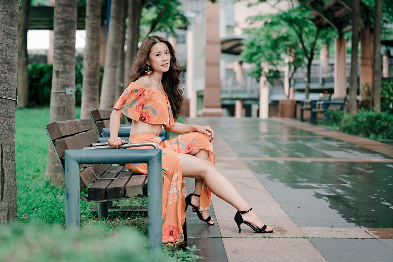 Обои для рабочего стола Шатенка боке Красивые Девушки Ноги Азиаты сидящие Скамейка шатенки Размытый фон красивый красивая девушка молодые женщины молодая женщина ног азиатка азиатки сидя Сидит Скамья