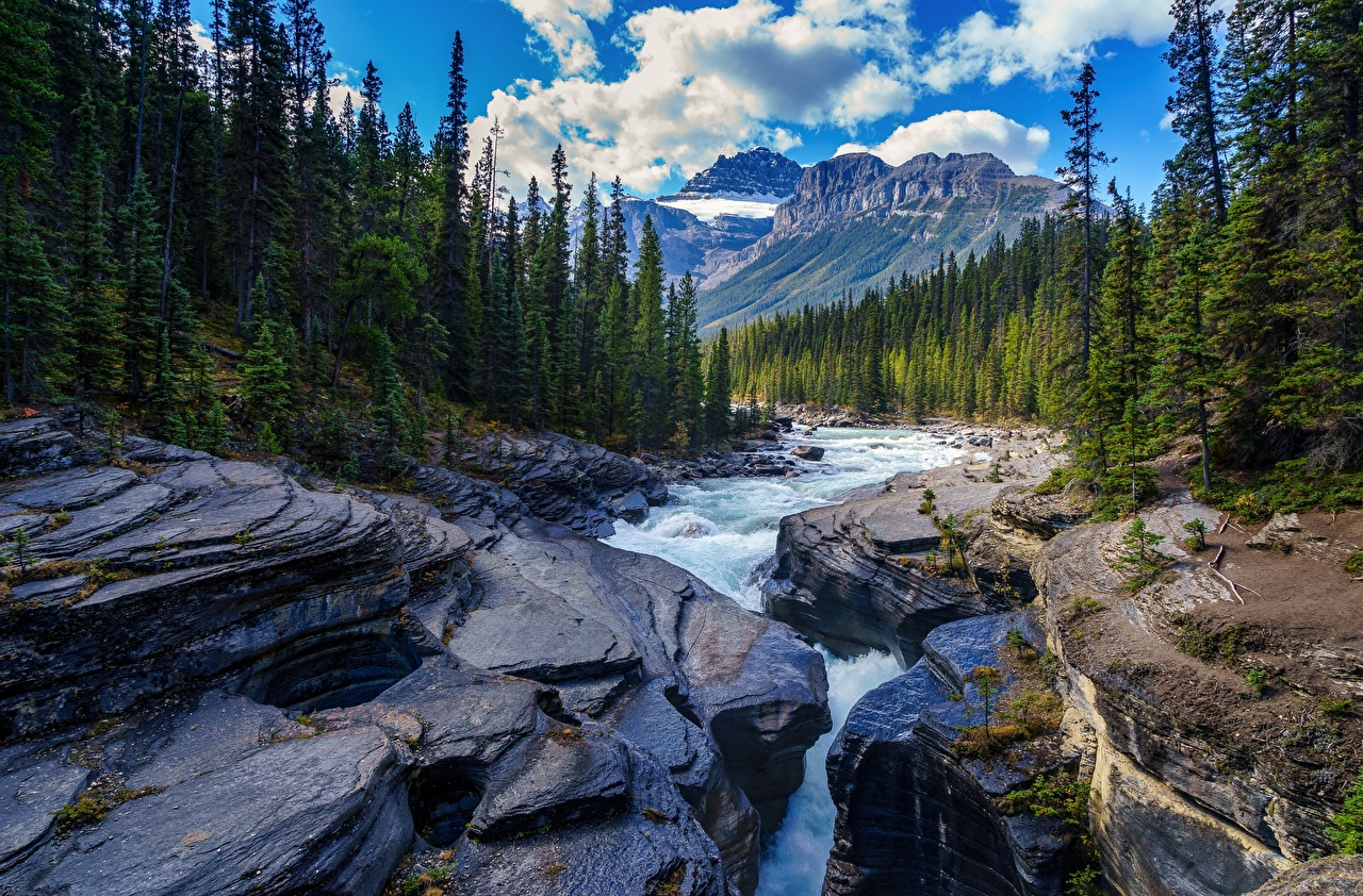 Фото Горы Природа Леса Пейзаж речка Камень гора лес Реки река Камни