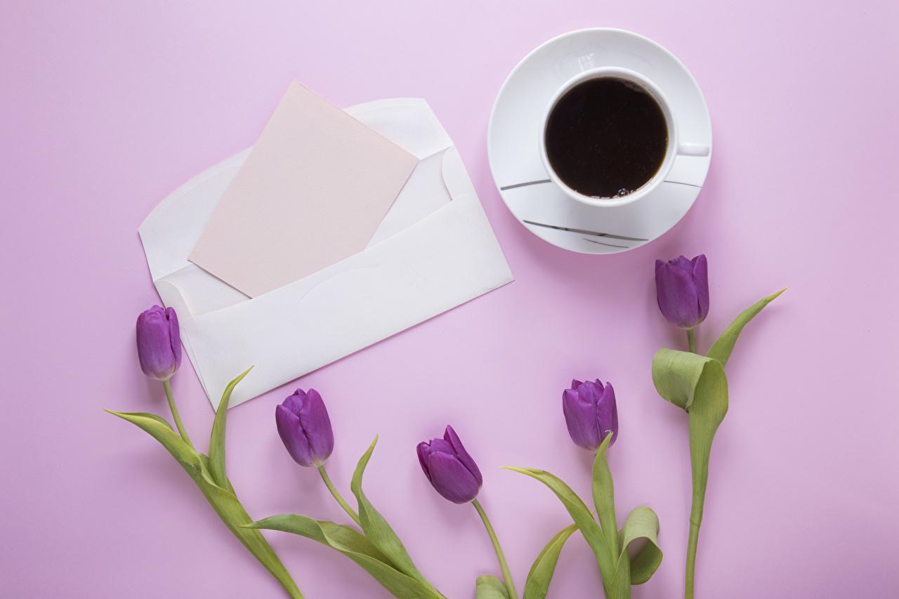 Обои для рабочего стола Чашка Кофе тюльпан Цветы Пища Розовый фон Лист бумаги Шаблон поздравительной открытки чашке Тюльпаны цветок Еда Продукты питания
