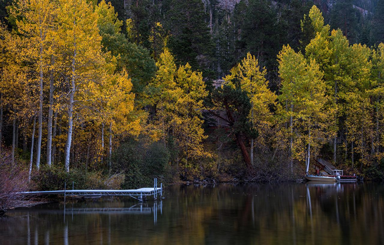 Картинка Осень Природа лес Озеро Причалы осенние Леса Пирсы Пристань