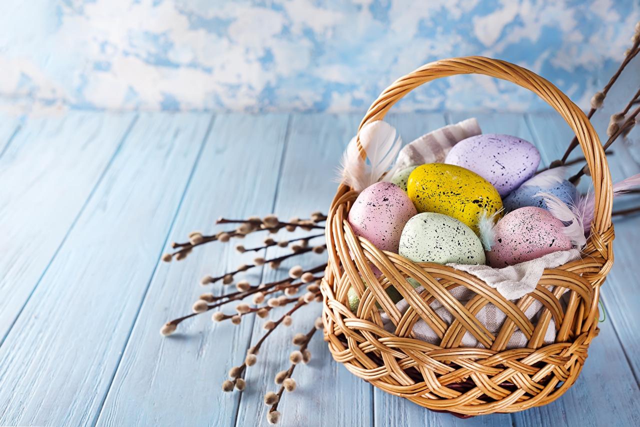 Фотографии Пасха яиц Корзинка яйцо Яйца яйцами Корзина корзины