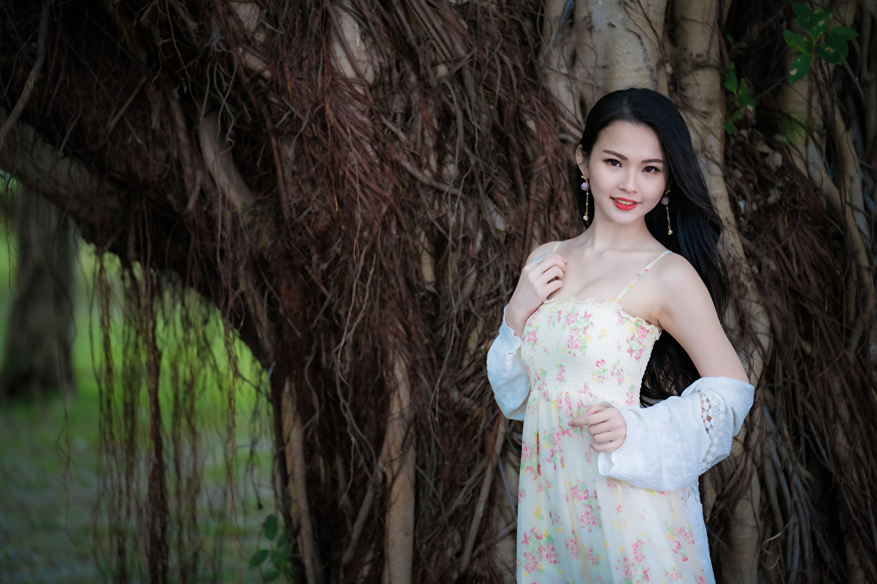 Картинки брюнетки Девушки Азиаты рука Взгляд Платье Брюнетка брюнеток девушка молодая женщина молодые женщины азиатки азиатка Руки смотрит смотрят платья