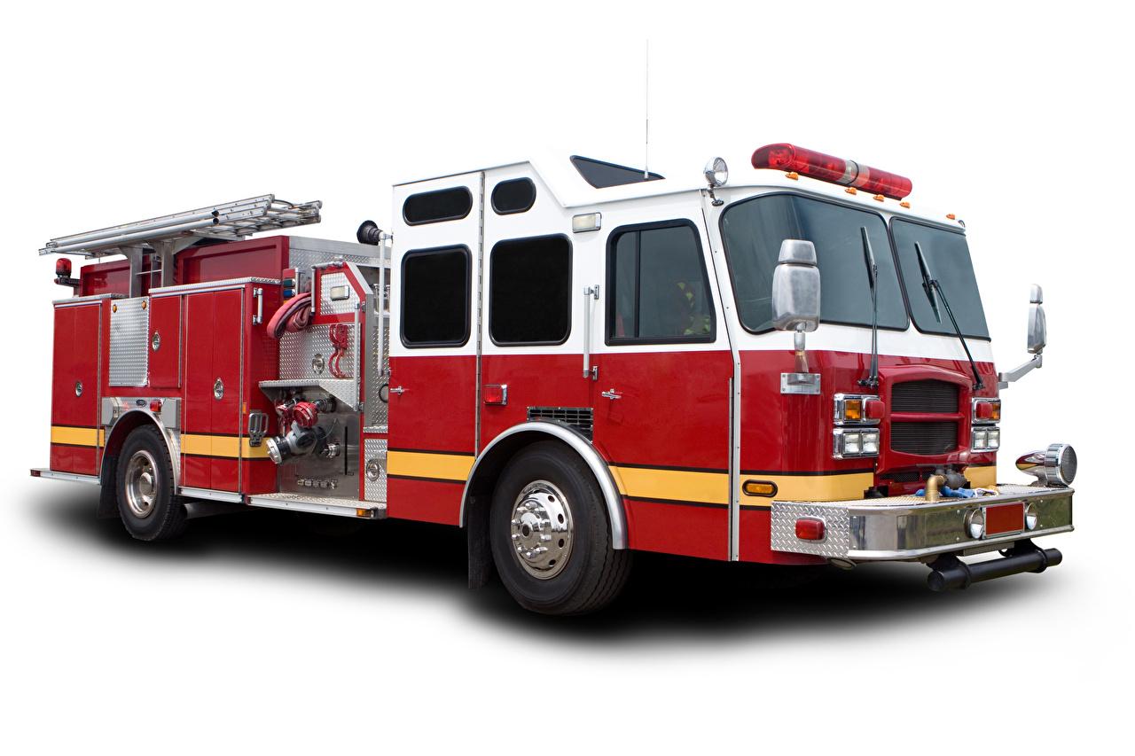 Обои Пожарный автомобиль Автомобили Белый фон Авто Машины