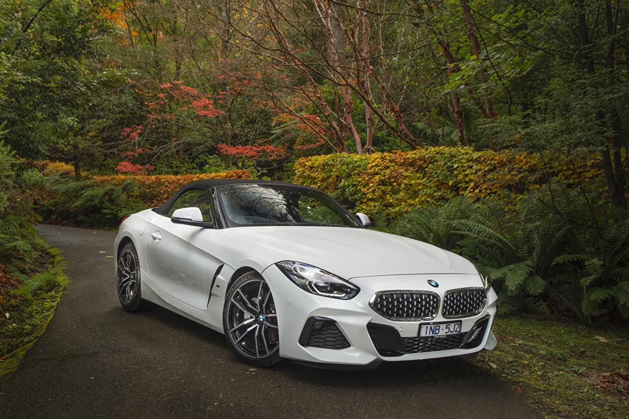 Обои для рабочего стола БМВ BMW Z4 2019 sDrive20i M Sport белая Автомобили BMW белых белые Белый авто машина машины автомобиль