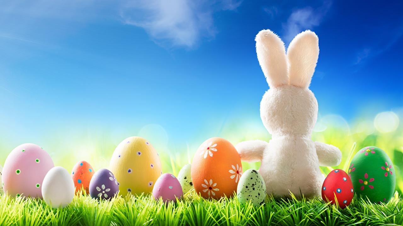 Обои Пасха Кролики Яйца Трава
