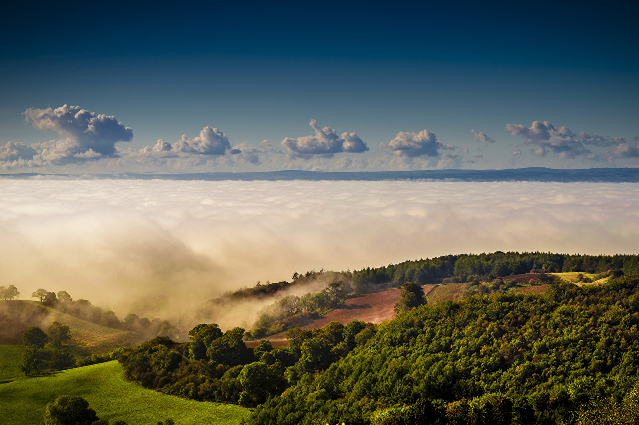 Фотографии Великобритания Yorkshire Природа Леса холмов облачно лес холм Холмы Облака облако