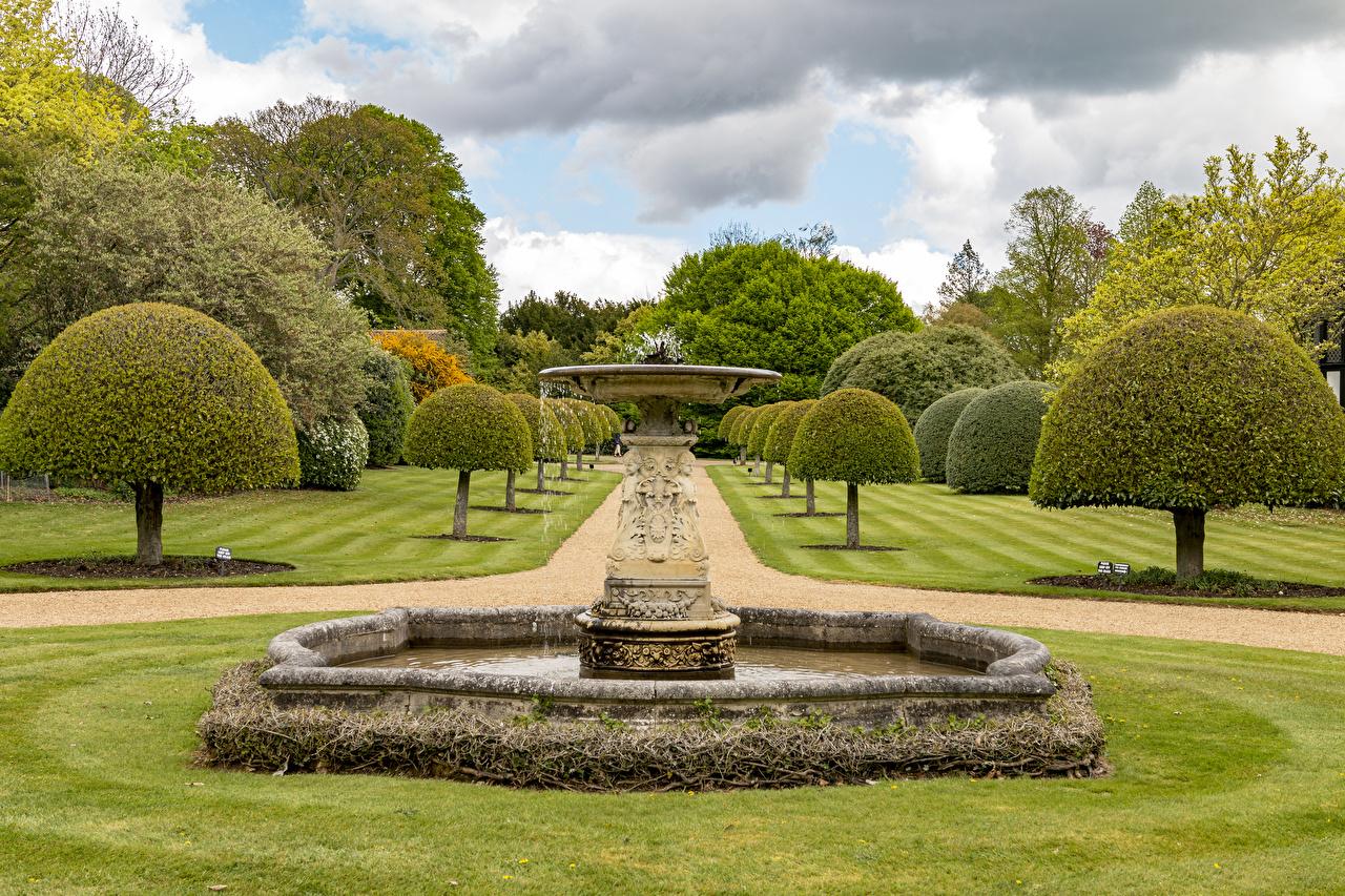 Фотография Фонтаны Великобритания Ascott House gardens Природа Сады Газон дерева дизайна газоне дерево Деревья деревьев Дизайн