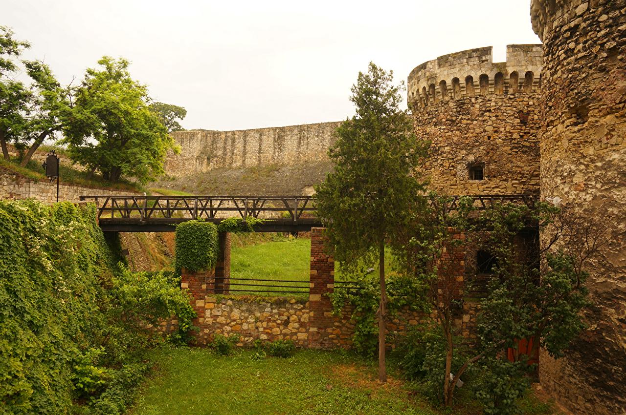 Фото Города Белград Крепость мост Сербия дерево стенка город Мосты Стена стене стены дерева Деревья деревьев