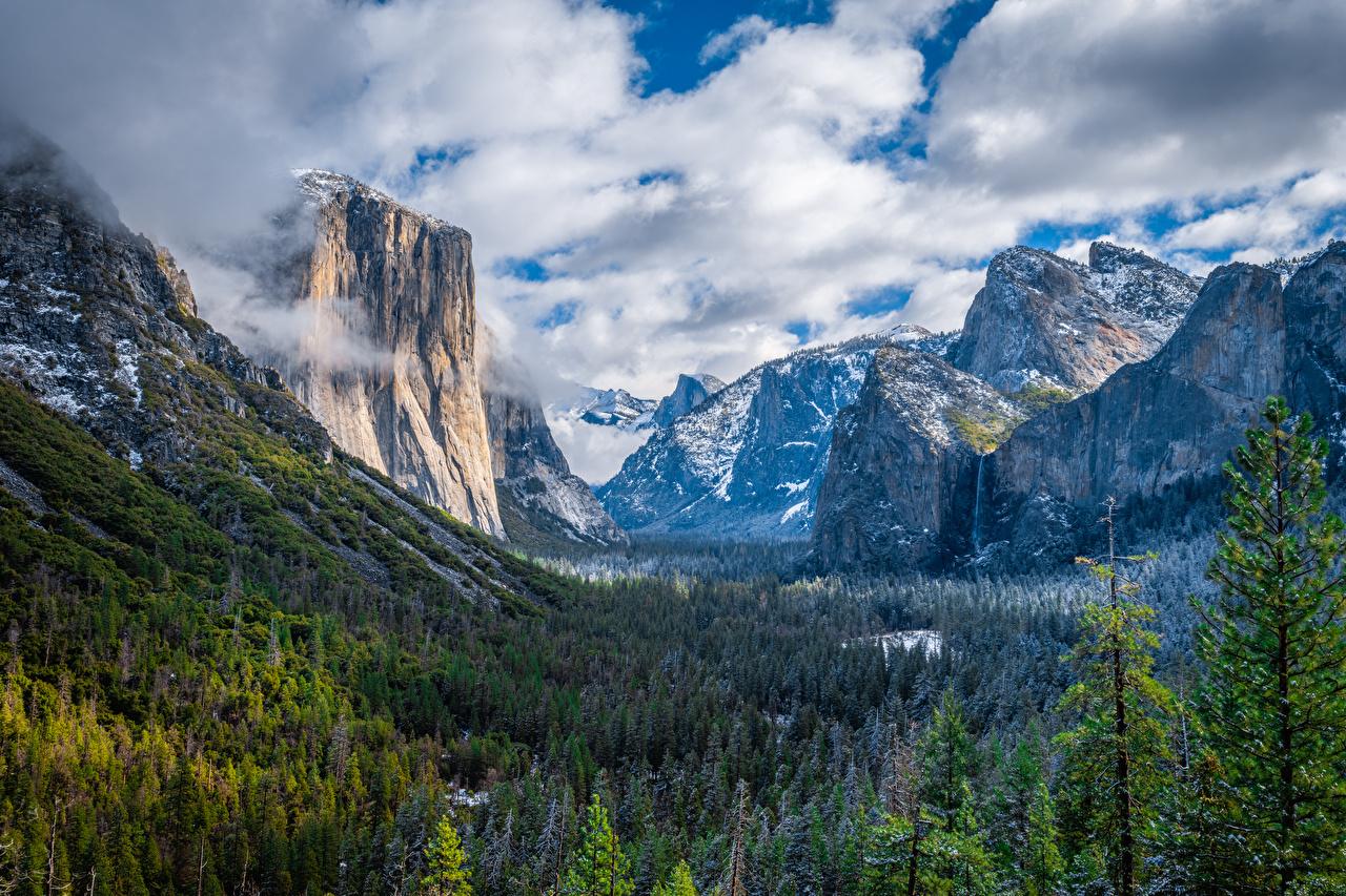 Картинки Йосемити калифорнии США Горы Скала Природа Леса Парки Пейзаж облако Калифорния штаты америка гора Утес скале скалы лес парк Облака облачно