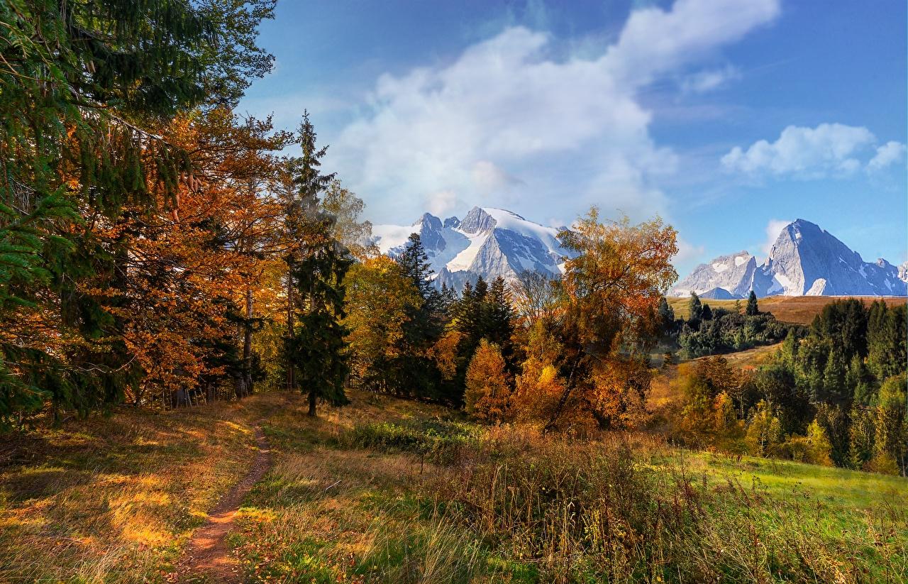 Фотография гора Природа осенние лес Деревья Горы Осень Леса дерево дерева деревьев