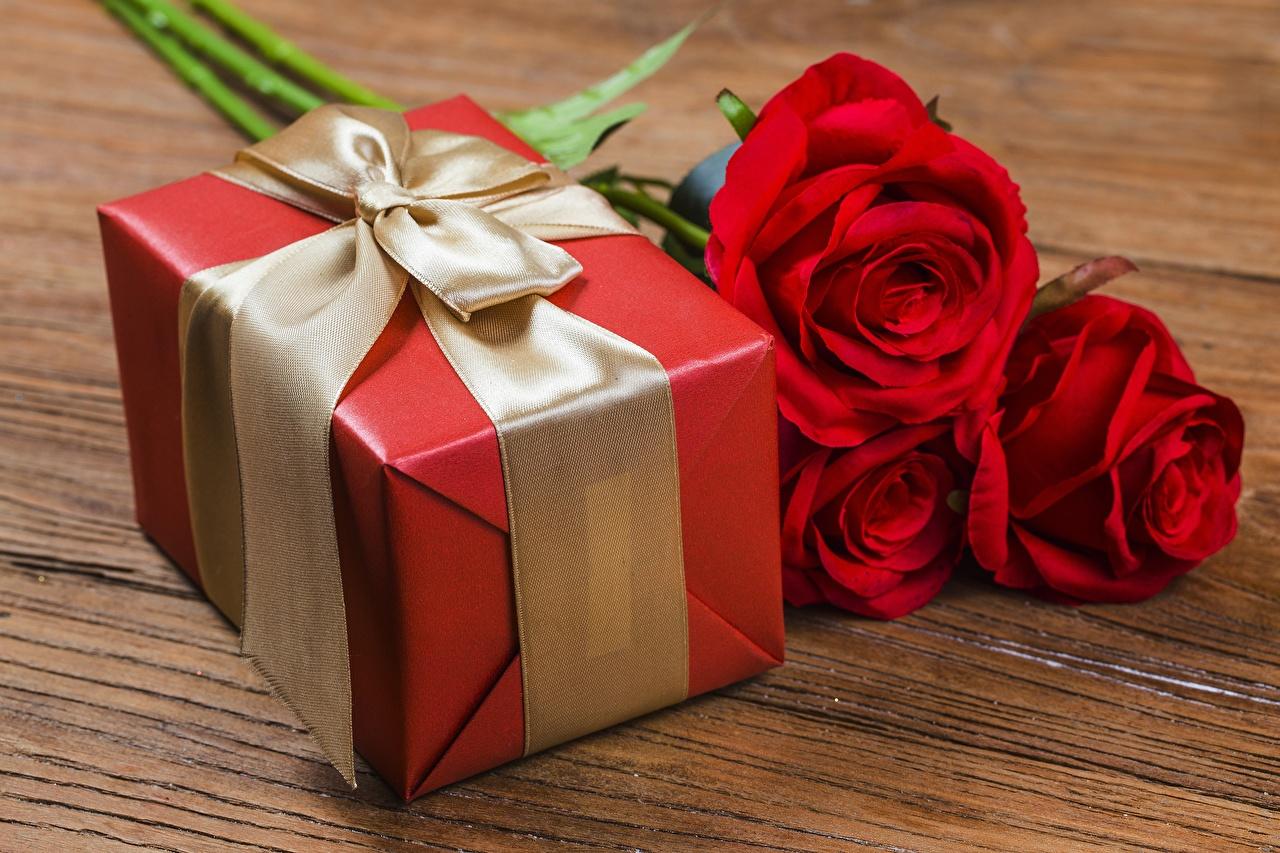 Обои для рабочего стола Розы Цветы подарков Бантик роза цветок Подарки подарок бант бантики