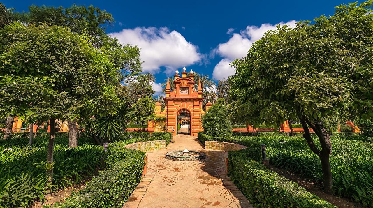 Обои для рабочего стола Испания Real Alcazar Замки Города Деревья замок город дерево дерева деревьев