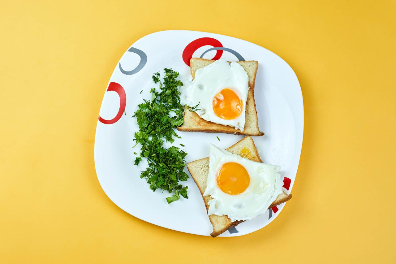 Картинки Яичница два Хлеб Укроп тарелке Продукты питания Цветной фон яичницы глазунья 2 две Двое вдвоем Еда Пища Тарелка