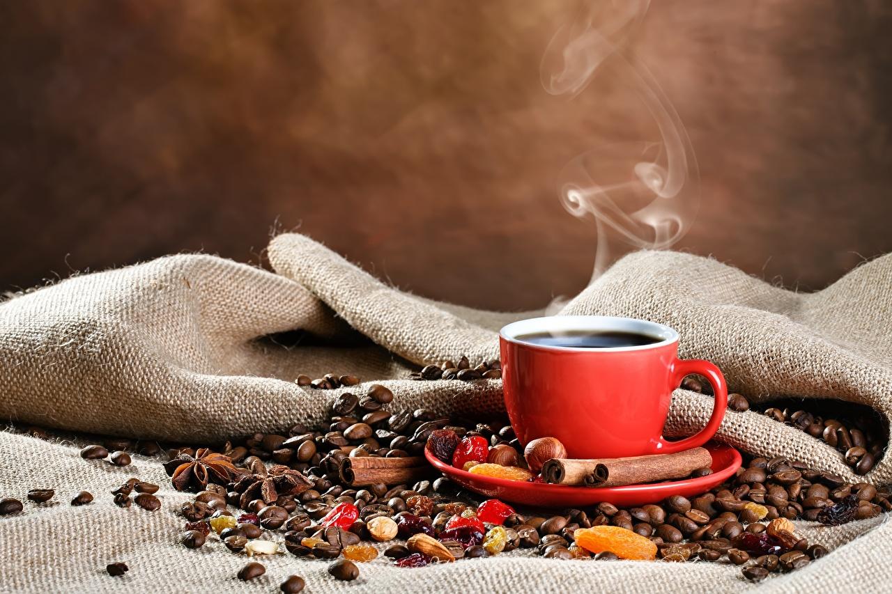 Фотография Кофе Зерна Корица Пища пары Чашка зерно Еда Пар чашке паром Продукты питания