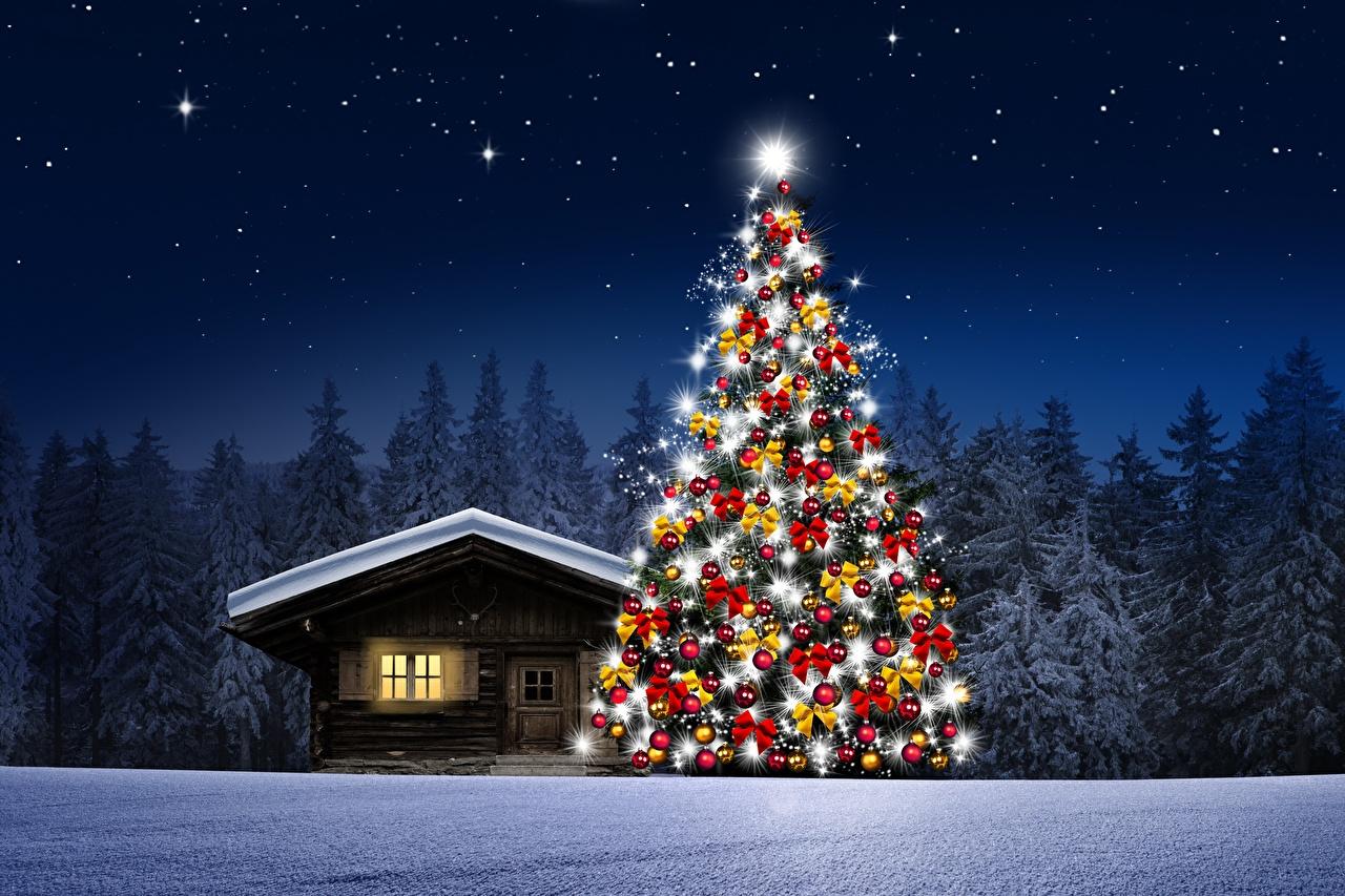 Фотография Елка Природа Снег Леса Ночные Здания Новогодняя ёлка лес снеге снега снегу Ночь ночью в ночи Дома