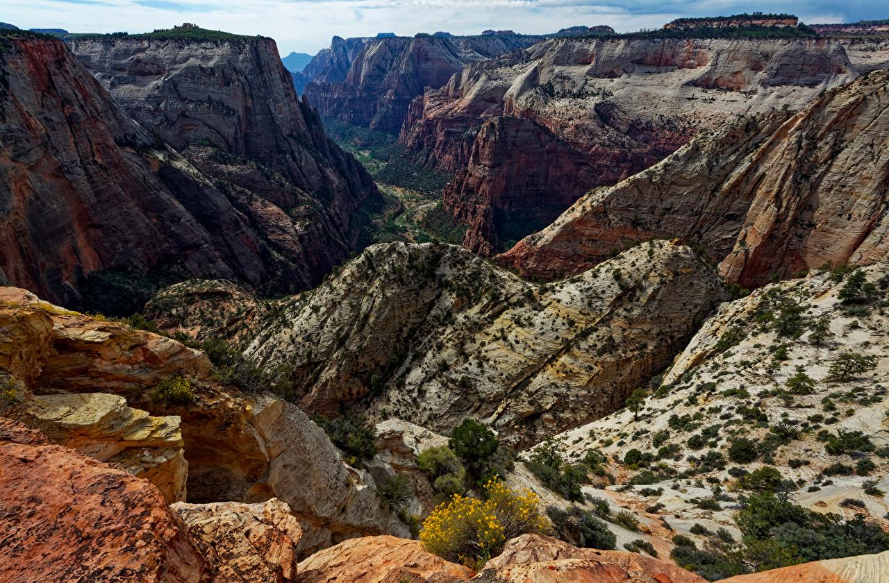 Обои для рабочего стола Зайон национальнай парк америка скале Каньон Природа парк США штаты Утес Скала скалы каньона каньоны Парки