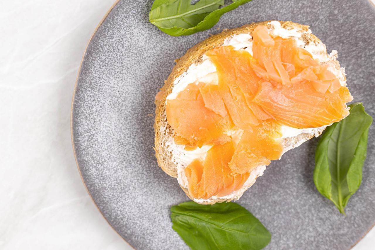 Фото Рыба Хлеб Бутерброды Еда бутерброд Пища Продукты питания