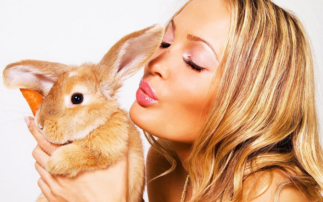 Обои для рабочего стола Кролики Блондинка Волосы Девушки белым фоном кролик блондинки блондинок волос девушка молодая женщина молодые женщины Белый фон белом фоне