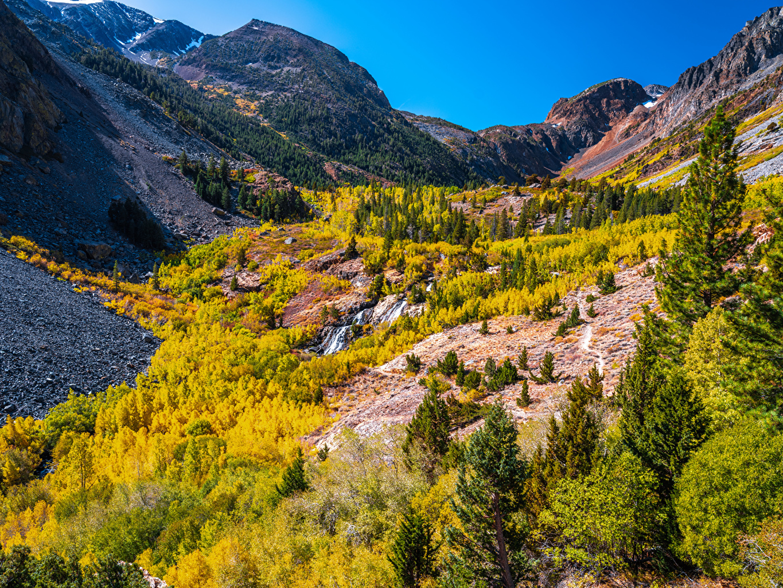 Фото Калифорния штаты Lundy Canyon Горы Осень Природа Деревья калифорнии США америка гора осенние дерево дерева деревьев