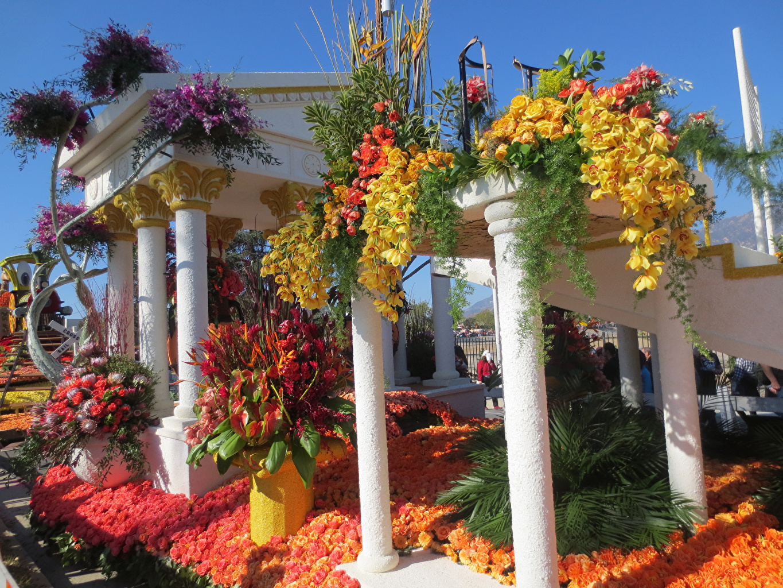Обои для рабочего стола Колонна Pasadena Розы Природа Орхидеи парк Дизайн колонны роза орхидея Парки дизайна