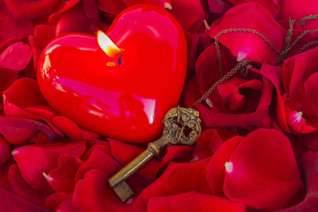 Фотографии День всех влюблённых сердечко Красный Лепестки цветок Свечи Замковый ключ День святого Валентина серце сердца Сердце красных красные красная лепестков Цветы ключа ключом