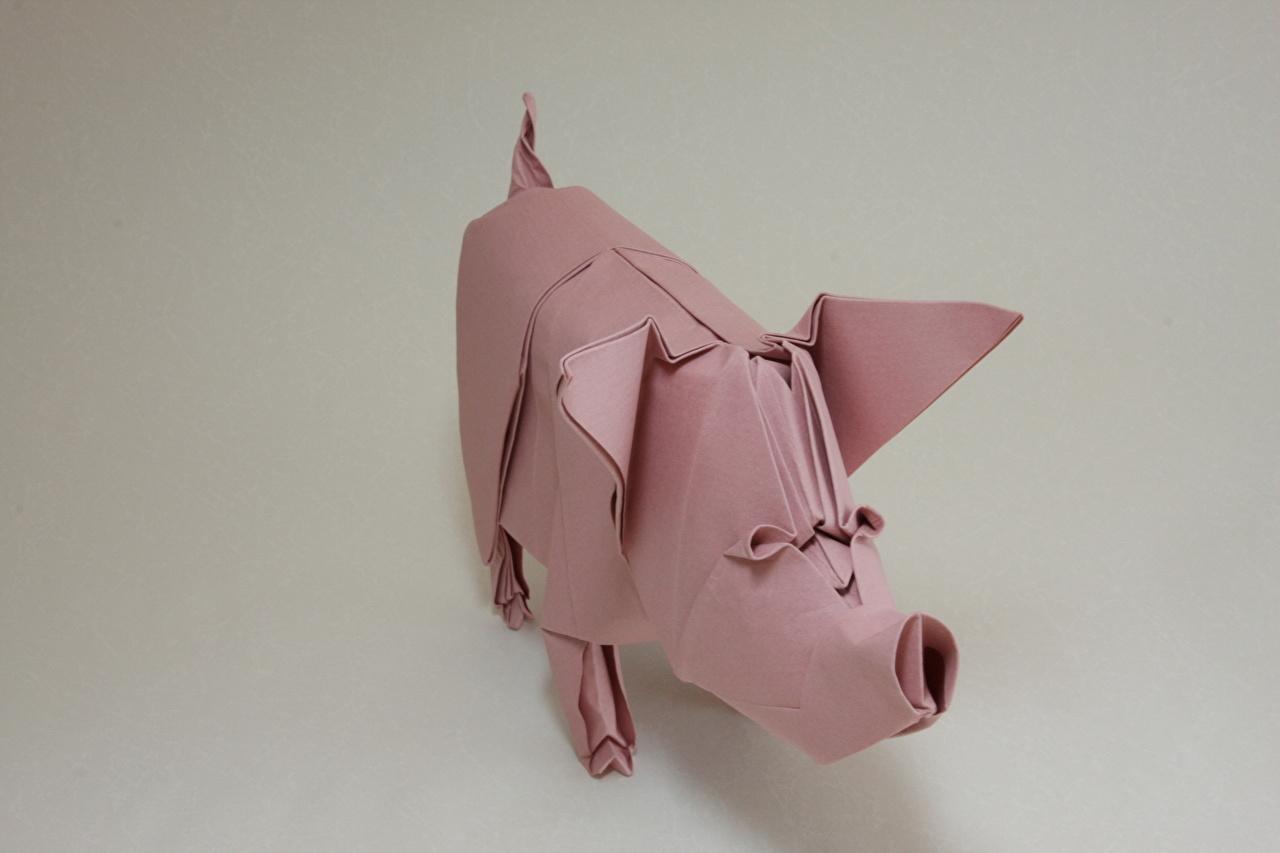 Картинка Домашняя свинья Оригами Бумага Животные Серый фон бумаге бумаги животное сером фоне