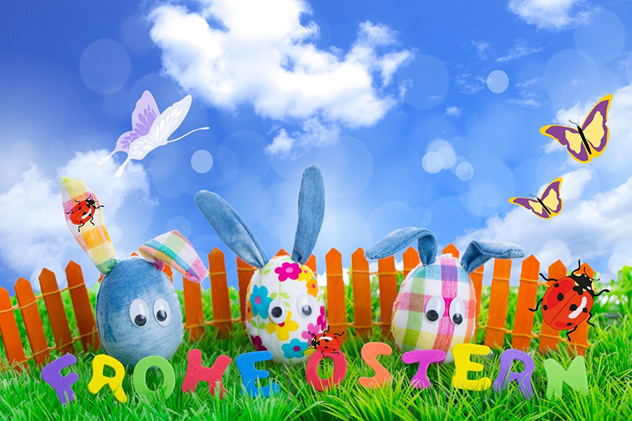 Картинки Пасха бабочка яиц Небо Забор траве Праздники Бабочки яйцо Яйца яйцами ограда забора забором Трава