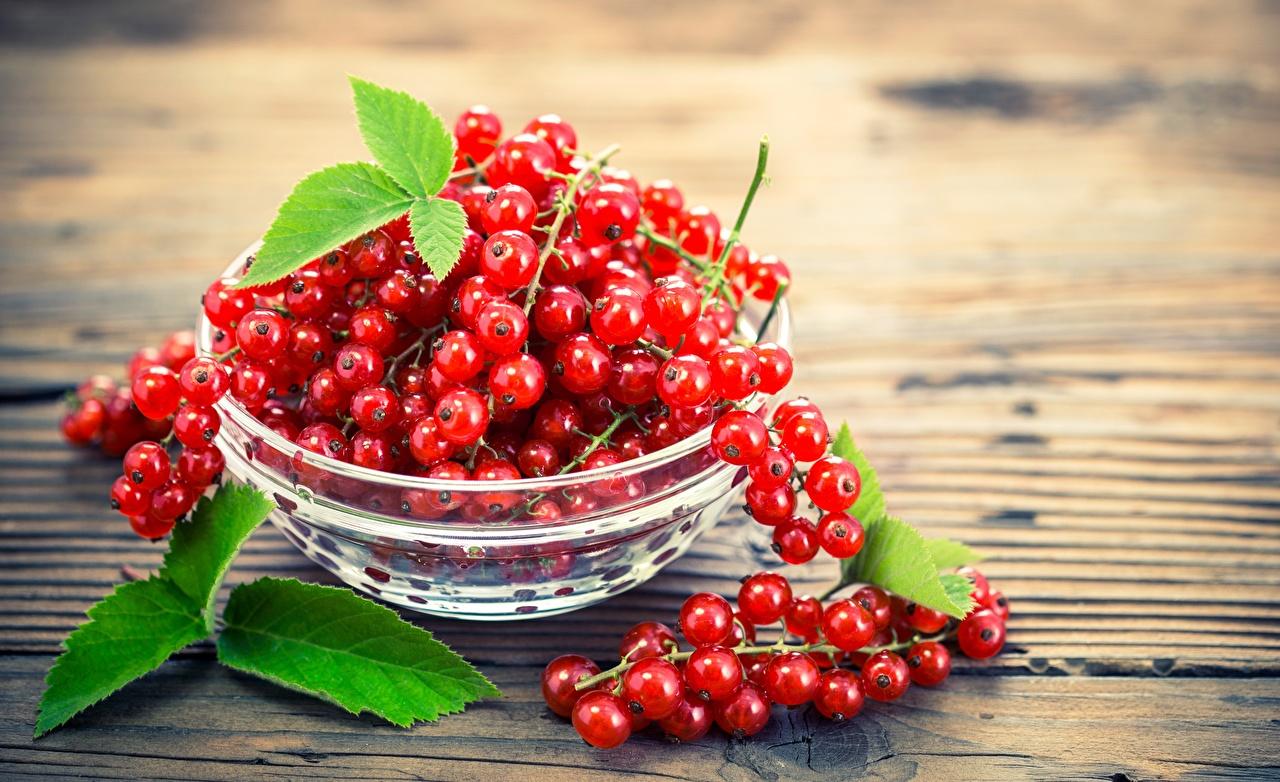 Картинки красных Миска Смородина Еда красная красные Красный Пища Продукты питания