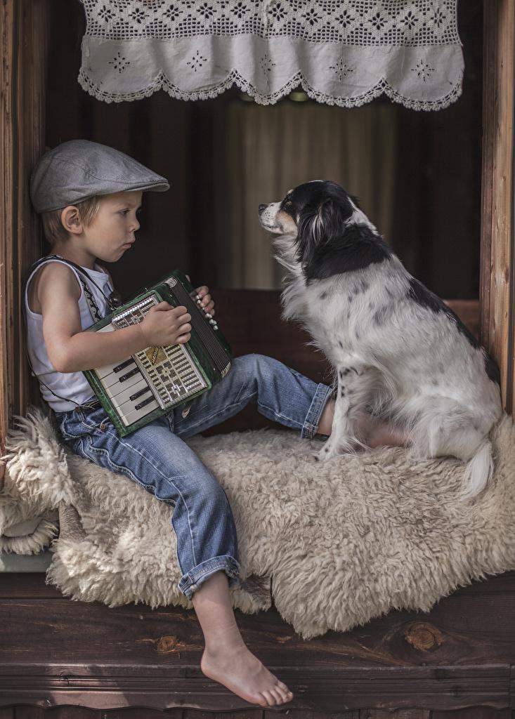 Фотографии Собаки Мальчики Ребёнок Джинсы Сидит Бейсболка Дети сидящие Кепка