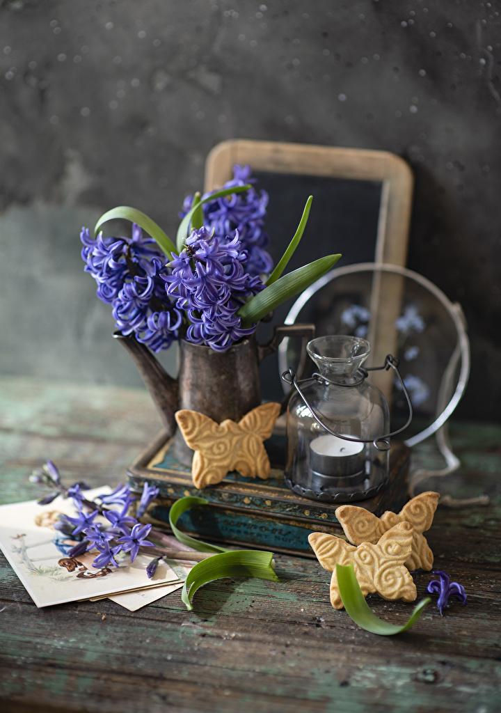 Фотография фиолетовых Цветы Еда Свечи Печенье Гиацинты  для мобильного телефона фиолетовая фиолетовые Фиолетовый цветок Пища Продукты питания