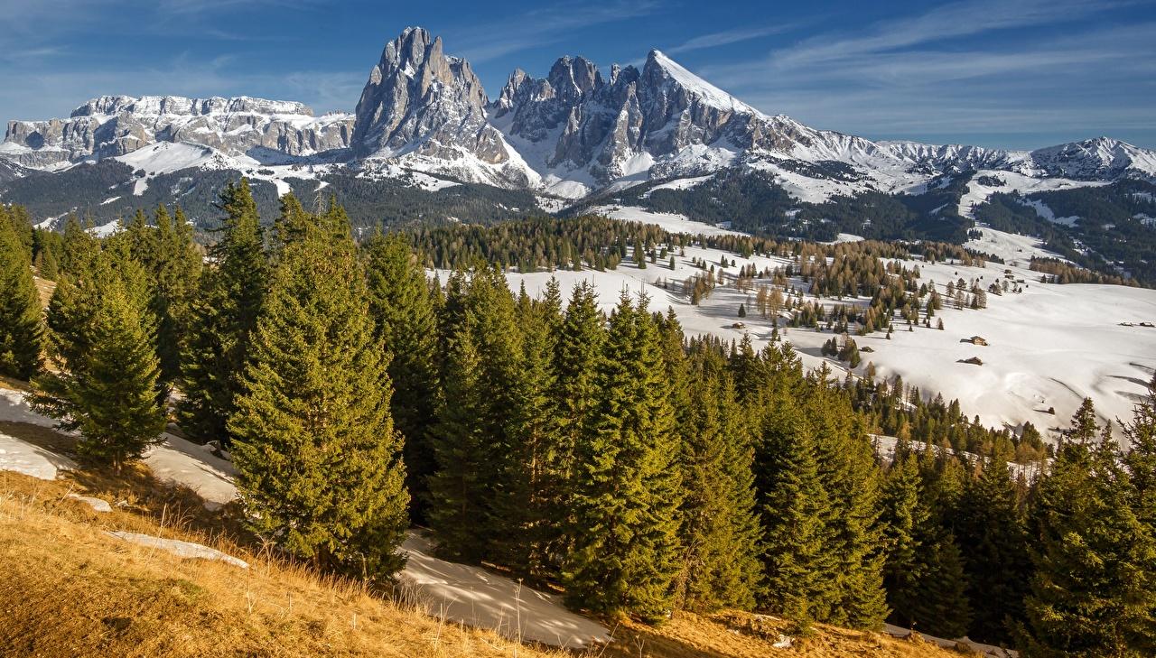 Фотография Альпы Италия South Tyrol, Dolomites, Langkofel Горы Природа снега Пейзаж Деревья альп гора Снег снегу снеге дерево дерева деревьев