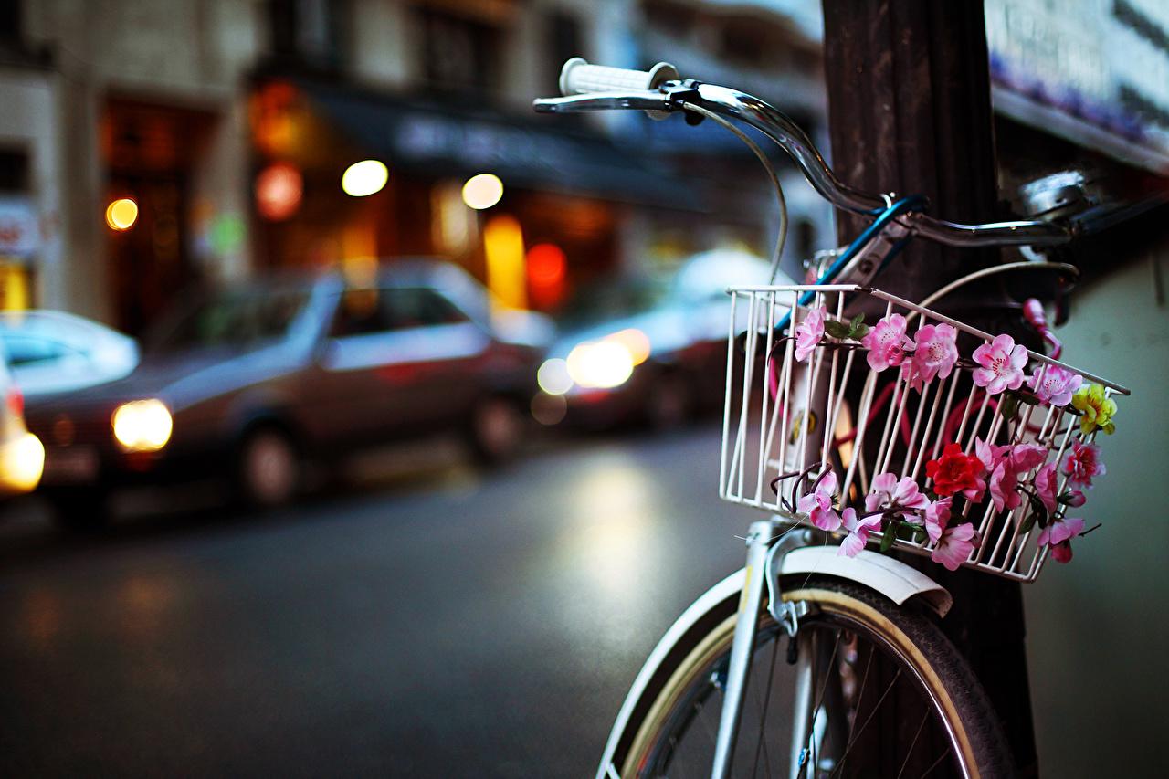 Фотография велосипеде город Велосипед велосипеды Города