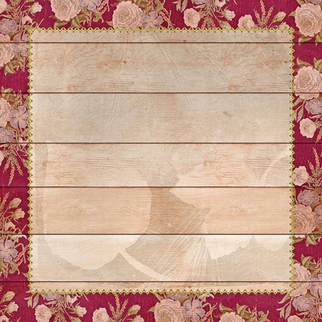 Фотографии Листва роза Шаблон поздравительной открытки Доски лист Листья Розы