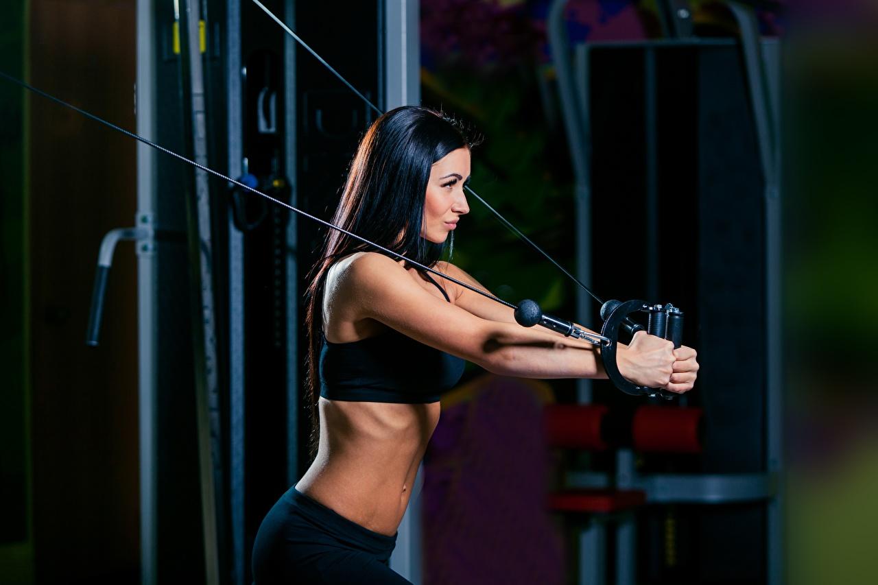 Фотография брюнетки Тренировка Фитнес Спорт девушка брюнеток Брюнетка тренируется физическое упражнение Девушки спортивные спортивный спортивная молодые женщины молодая женщина