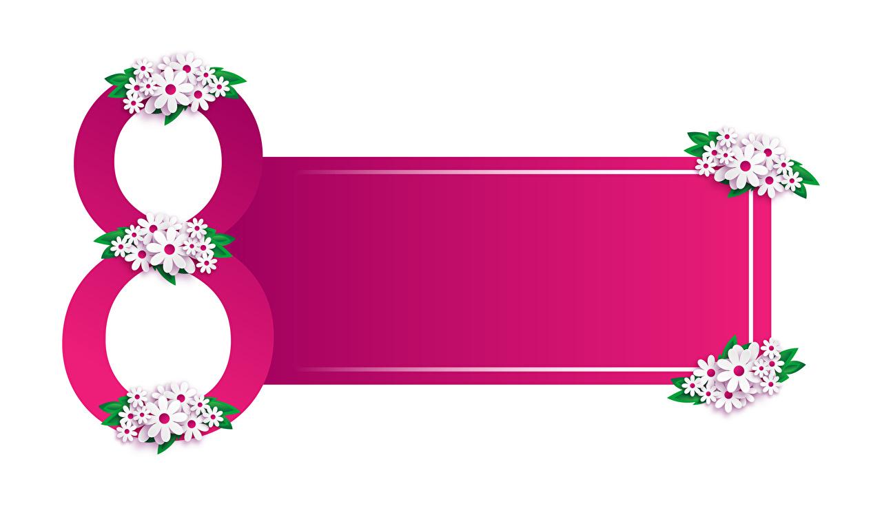 Картинка 8 марта ромашка Шаблон поздравительной открытки Белый фон Международный женский день Ромашки белом фоне белым фоном