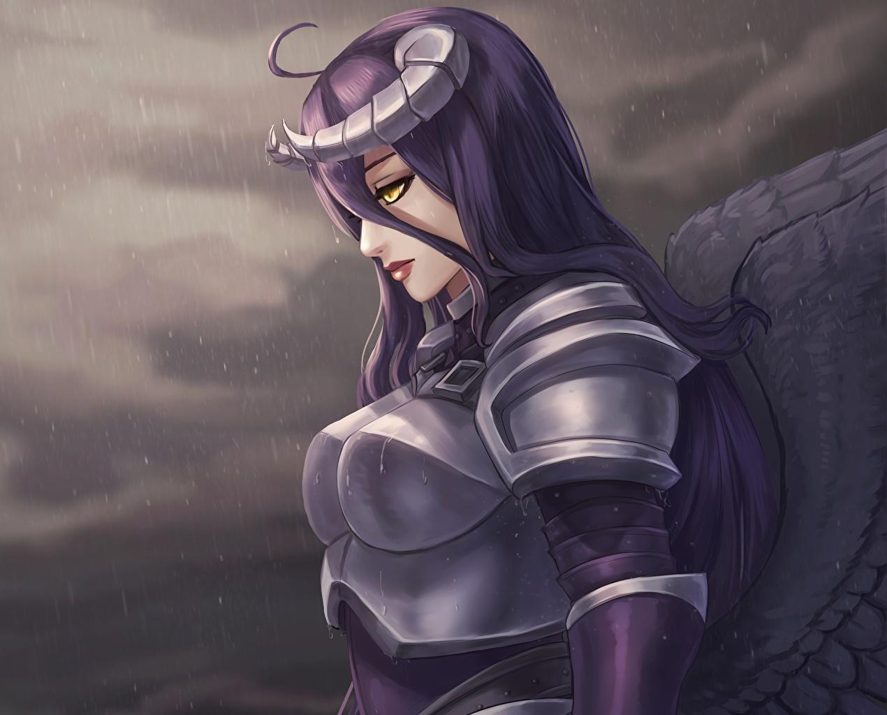 Картинки Overlord Доспехи Воители Armored Albedo Девушки Игры броня воины