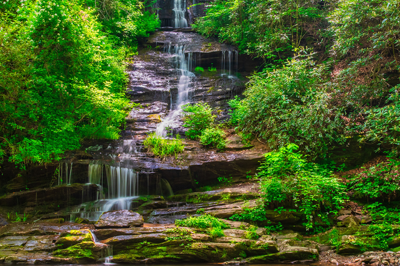 Картинки штаты Great Smoky Mountains National Park Утес Природа Водопады Парки Кусты США Скала