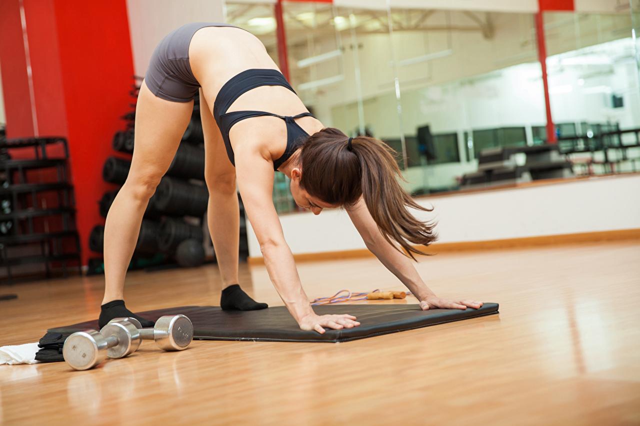 Фотография Шатенка Тренировка Фитнес Спорт Девушки рука шатенки тренируется физическое упражнение девушка спортивные спортивный спортивная молодые женщины молодая женщина Руки
