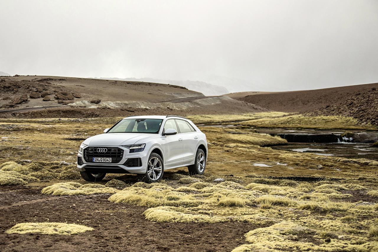Фотографии Audi 2018 Q8 55 TFSI quattro Worldwide Белый авто Металлик Ауди белых белые белая машина машины автомобиль Автомобили