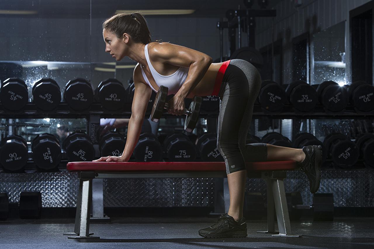 Фотография физическое упражнение Фитнес Гантели девушка Ноги Руки Скамейка Тренировка тренируется гантеля гантель Девушки гантелей гантелями молодая женщина молодые женщины ног рука Скамья