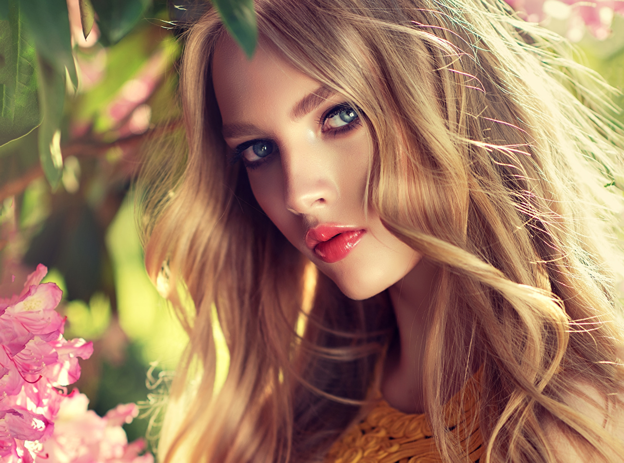 Фото Русые Блондинка Красивые Лицо Девушки смотрит Взгляд