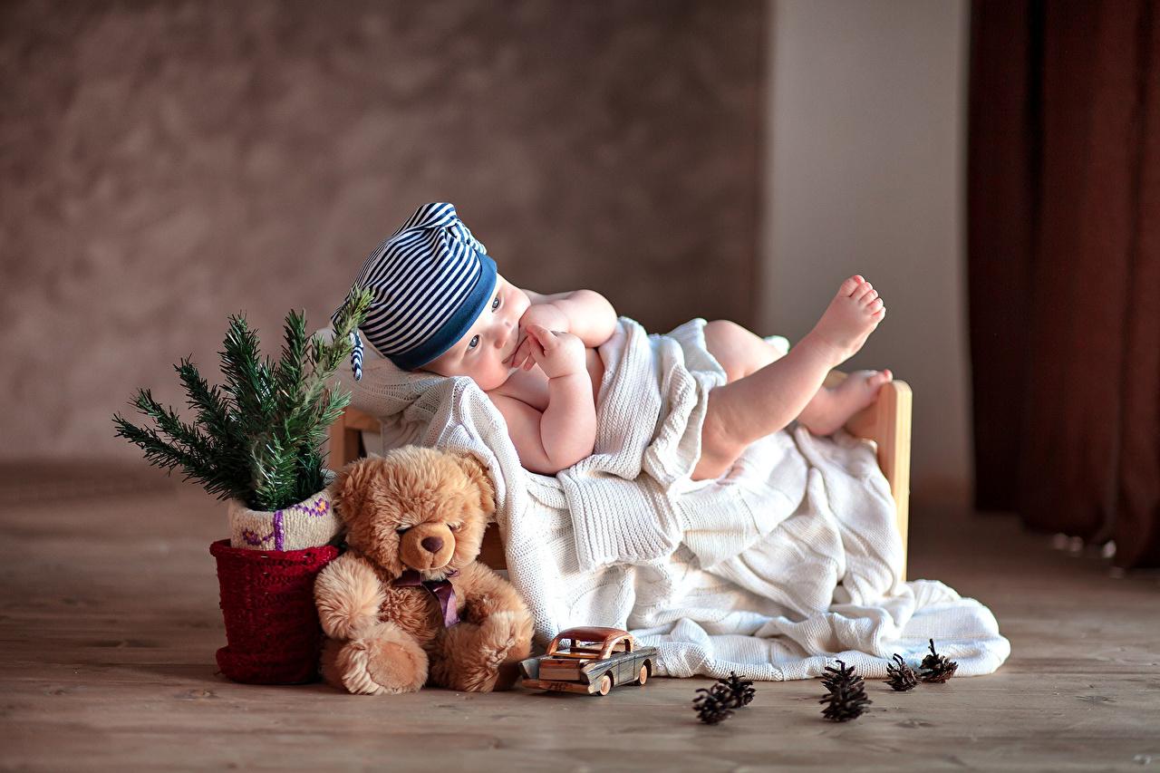 Фотография младенец Дети Мишки Игрушки Праздники младенца Младенцы грудной ребёнок ребёнок Плюшевый мишка игрушка