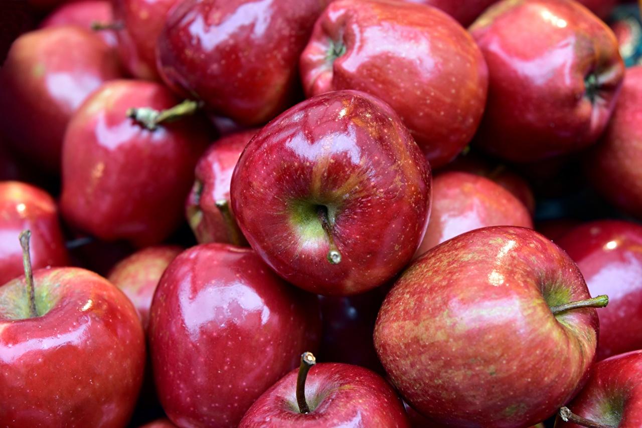 Картинка красных Яблоки Пища Много красная красные Красный Еда Продукты питания